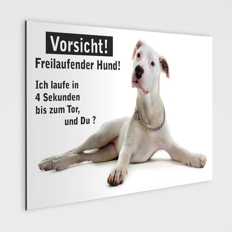deutsche doggen schild vorsicht freilaufender hund. Black Bedroom Furniture Sets. Home Design Ideas