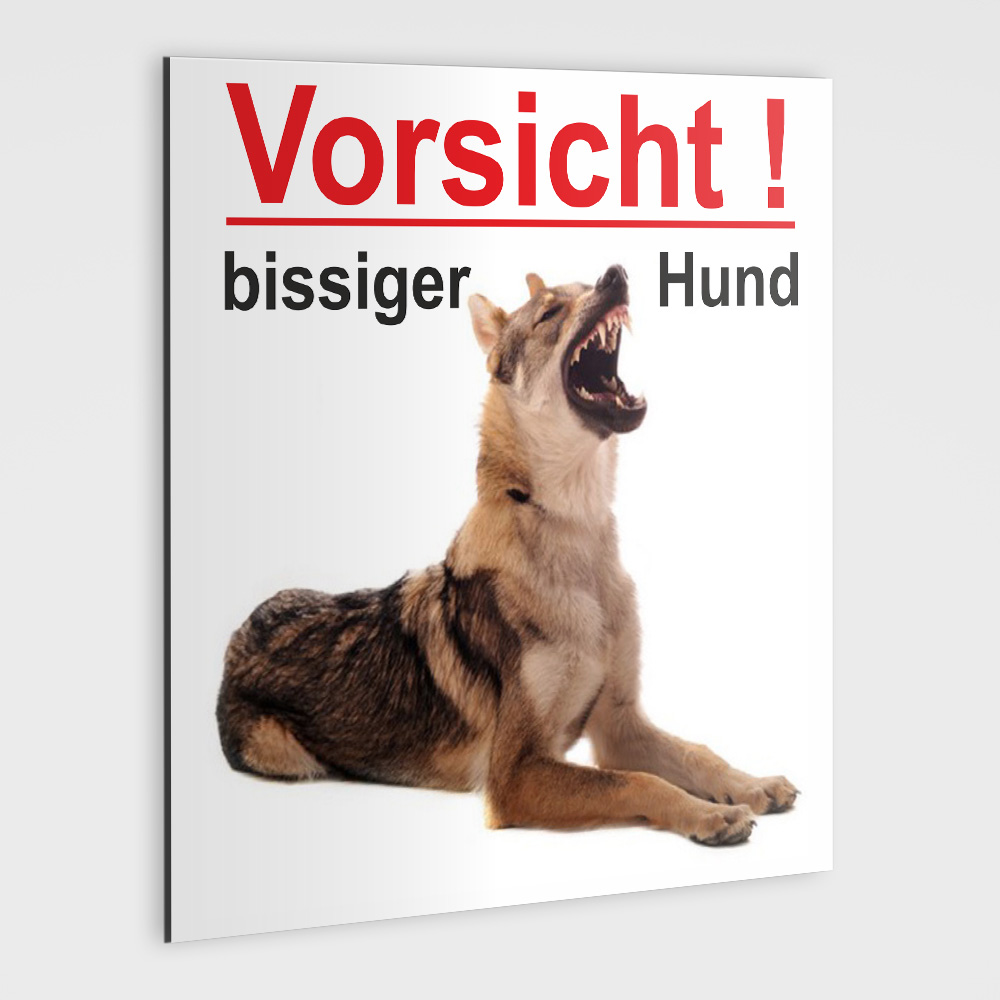 schild vorsicht bissiger hund. Black Bedroom Furniture Sets. Home Design Ideas