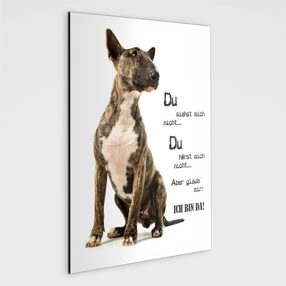 bullterrier schild du siehst mich nicht. Black Bedroom Furniture Sets. Home Design Ideas