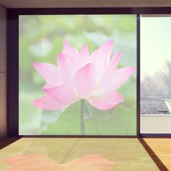 Wunschbild auf Fensterfolie, Sichtschutz auch für Ihren Wintergarten.