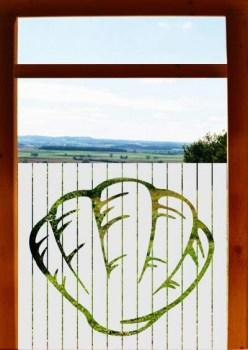 Sichtschutzfolie Badezimmerfenster Muschel