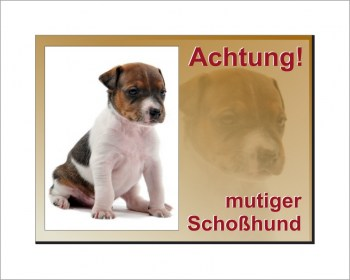 Jack Russel Terrier-Schild - Vorsicht mutiger Schoßhund!