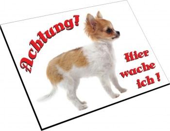Chihuahua Schild - Hier wache ich!