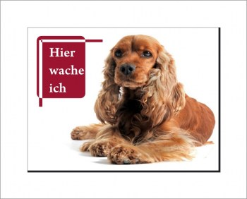Cocker Spaniel  Schild - HIER WACHE ICH!