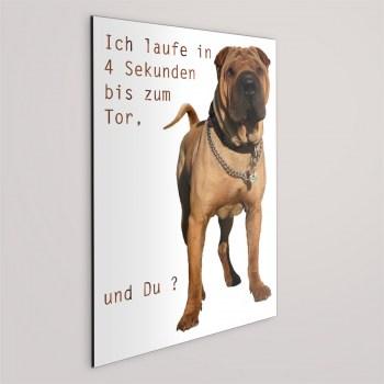 Boxer Hunde Schild - ICH LAUFE IN 4 SEKUNDEN.. !