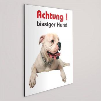 Schild - Achtung bissiger Hund! American Bulldog