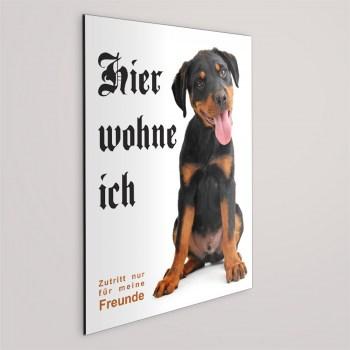 Rottweiler Schild - HIER WOHNE ICH!